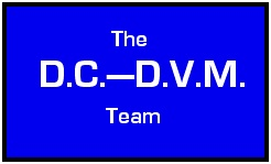 DC-DVM team